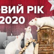 У чому зустрічати 2020: яке вбрання підійде для святкування року Білого Щура