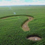 Реформа землі: основні аспекти