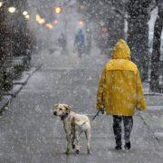 Дощі, мокрий сніг та ожеледиця: погода в Україні на вихідні