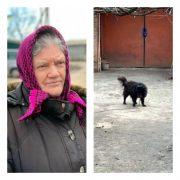 """З'явилися фото """"елітного пса"""", якого пенсіонерці порадив продати нардеп Брагар, щоб сплатити за газ("""