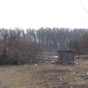 Батько залишив мотузку від кози і дитина повісилася: загибель 5-річного хлопчика вразила всю Україну