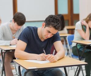 В коледжах та ПТУ України з'явиться ще одна форма навчання