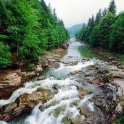 З річки Прут у Микуличині витягли мертву людину
