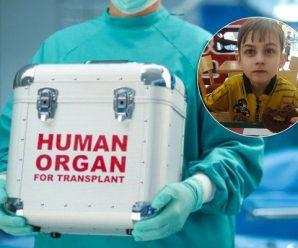 """""""Нас відправили вмирати?"""" В Індії тяжкохворі діти з України потрапили в пастку через пересадку органів"""