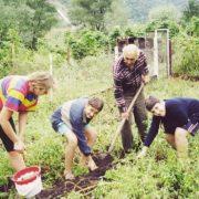 В Україні за допомогу у висаджені городів штрафує на 17 тис грн