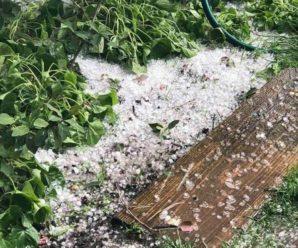 Все біле, ніби снігом засипало: на Буковині випав сильний град, опубліковано фото