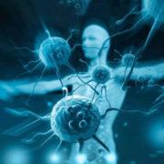 Вчені заявили, що новий коронавірус мутував і став більш заразним