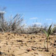 Україна чекає посуха, а частину Європи – повені: опублікований масштабний прогноз погоди на літо