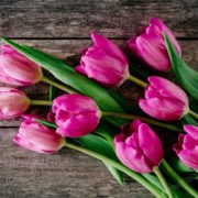 10 травня – День Матері: що це за свято, традиції та що не можна робити у цей день