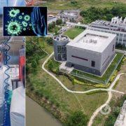 Крім COVID-19 є ще три штами: у лабораторії Уханя зробили відверте зізнання