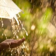 Значні опади та шквалистий вітер очікують на Прикарпатті