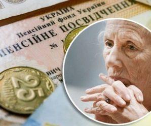 Українцям на нові пенсії доведеться віддати частину зарплати: міністр розкритикував реформу