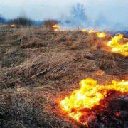 Прикарпатські рятувальники показали список штрафів за підпал трави