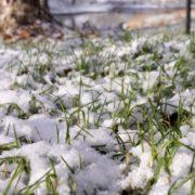 Курорт Яремче в розпал літа засипало снігом – можна грати в сніжки