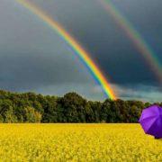 В Україні буде спекотно, але одну область накриють дощі: прогноз на 22 липня