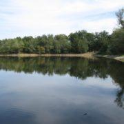 У Польщі у ставку знайшли тіло українця