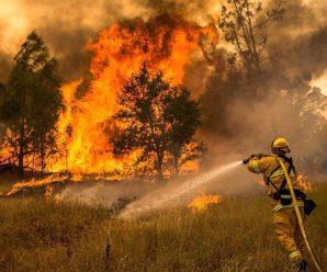 Через лісову пожежу в Іспанії евакуювали понад дві сотні осіб