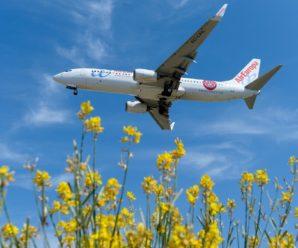 В Іспанії екстрено посадили літак через українця, який відмовився надягати маску