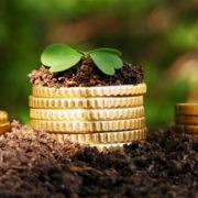 На Прикарпатті від підприємця вимагають повернути землю вартістю понад 7 млн грн