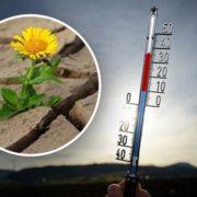 Будуть побиті температурні рекорди: синоптики розповіли українцям про погоду на серпень