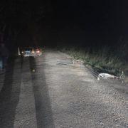 Збив велосипедиста та втік: на Прикарпатті розшукали винуватця ДТП (ФОТО)