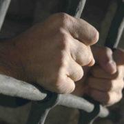 """Прикарпатцю """"світить"""" до семи років в'язниці за незаконну рубку лісу"""