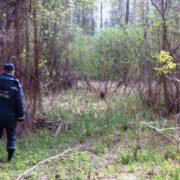 На Прикарпатті в лісі  знайшли тіло  жінки