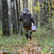 Пішов по гриби та не повернувся: чоловіка знайшли мертвим