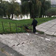 Ґвалтували та душили сумкою: біля автобусної зупинки знайшли понівечене тіло жінки без волосся