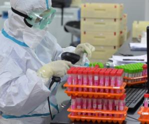 Вчені зробили несподівану заяву щодо походження коронавірусу