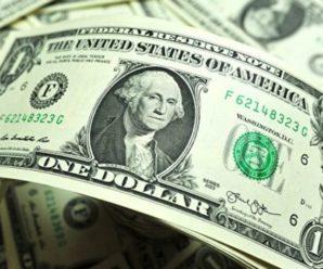 Експерт розповів, що буде з курсом валют в Україні, якщо запровадять жорсткий карантин