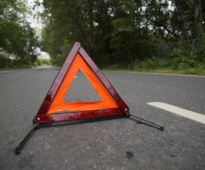 """На Херсонщині сталася смертельна ДТП: п'яний водій мікроавтобуса зіткнувся з """"ВАЗом"""""""