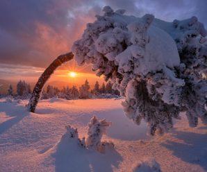 Всю Україну засипле снігом: Укргідрометцентр дав прогноз на грудень