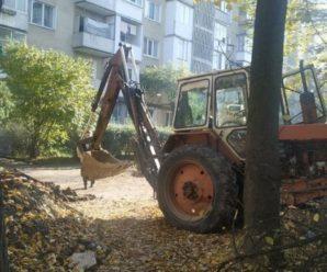 У Франківську комунальники ледь не закопали кішку з кошенятами