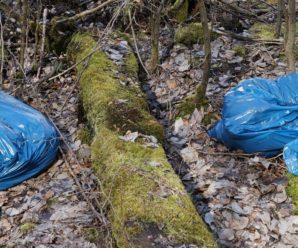 У Раді підтримали штрафи за пластикові пакети: кого каратимуть і на скільки