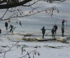 Небезпечні ігри: 15 дітей вийшли на тонкий лід Дністровського лиману за 30 метрів від берегу
