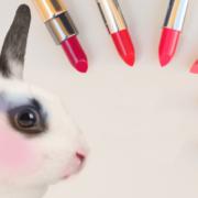 В Україні заборонили випробовувати косметику на тваринах