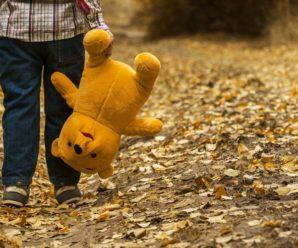 За рік прикарпатські поліцейські розшукали 163 безвісти зниклих дитини