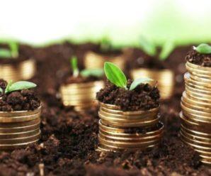 Стало відомо, які податки доведеться сплатити при купівлі-продажу землі