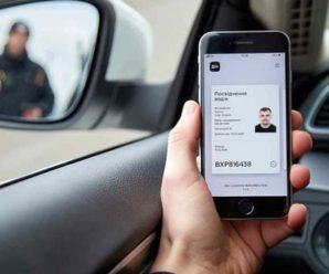 В Україні дозволили змінювати та замовляти водійські права онлайн: як це працюватиме