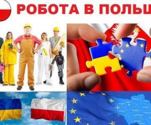 Важлива інформація про працевлаштування в Польщі