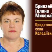 Радниця Марцінківа задекларувала 15 земельних ділянок