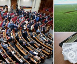Українці можуть безкоштовно отримати гектари землі: що насправді змінив Кабмін
