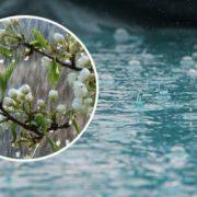 Мокрий сніг, дощі і штормовий вітер: погода зіпсується майже у всіх областях
