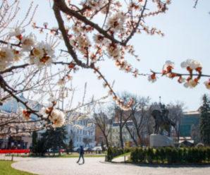 На українців чекають заморозки перед Великоднем: коли потеплішає