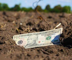 Шмигаль розповів, як зросте ціна на землю в Україні