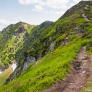 У Карпатах туристи виявили тіло чоловіка біля гори Піп Іван Мармароський