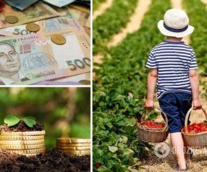 Податки для власників городів: у Раді пропонують нововведення