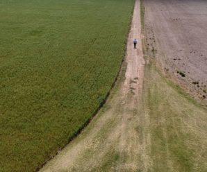 Уряд пропонує ввести новий податок на землю в Україні: що це означає