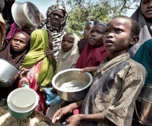 Понад 40 мільйонам людей у світі загрожує голод